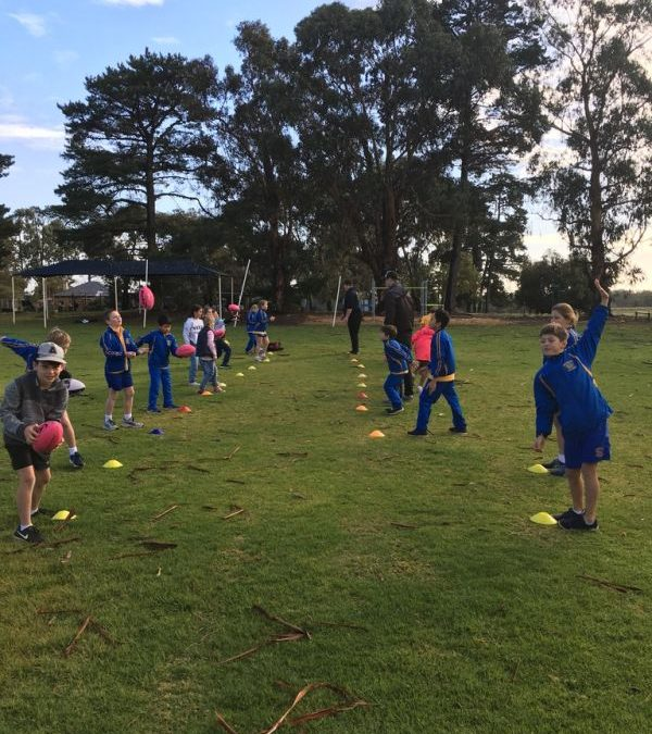 Footy Clinic Term 2