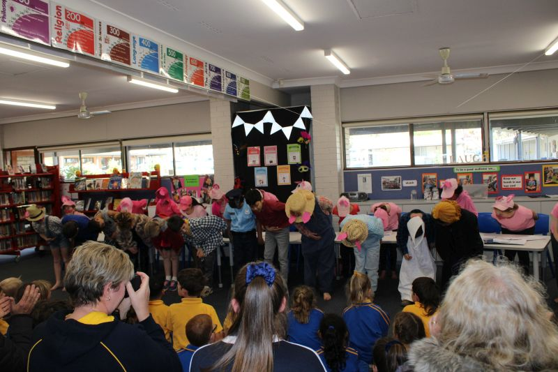 Year 3/4 Pig assembly