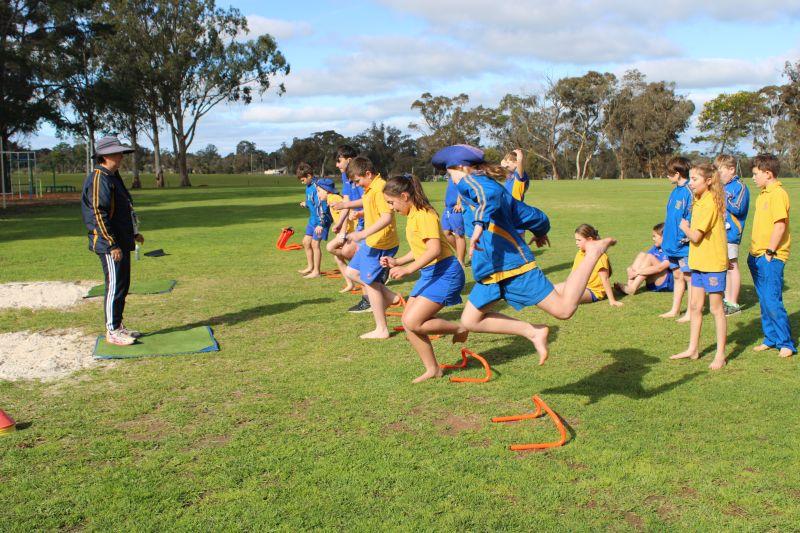 Faction Sports Training
